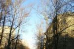 Продажа Квартиры,  ул. михайлова дом 15к2